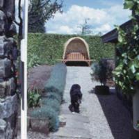 Dog in Kitchen Garden - YGA00517<br /><br />