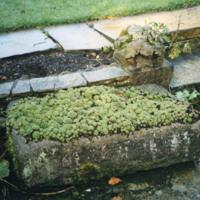 Rectangular Stone Trough - YGA00349