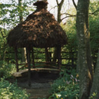The Root House in the Dell - YGA00401