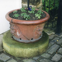 Lion-Head Terracotta Pot - YGA00354