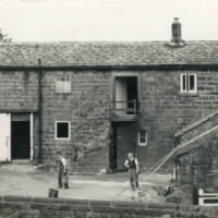 York Gate Farm - YGA00099