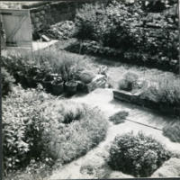 Early Photograph of Herb Garden - YGA00074