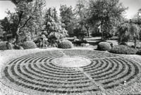 Maze Looking on to Front Garden - YGA00409